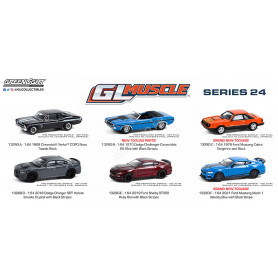 COFFRET 6 GL MUSCLE - SERIES 24